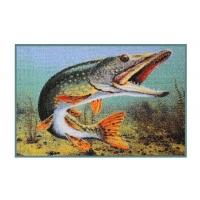 Rohož 3D Štika - Delphin