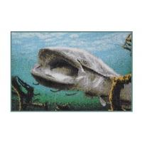 Rohož 3D Sumec pod hladinou - Delphin